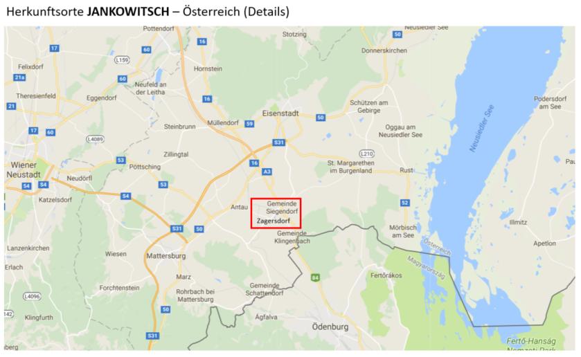 Jankowitsch D