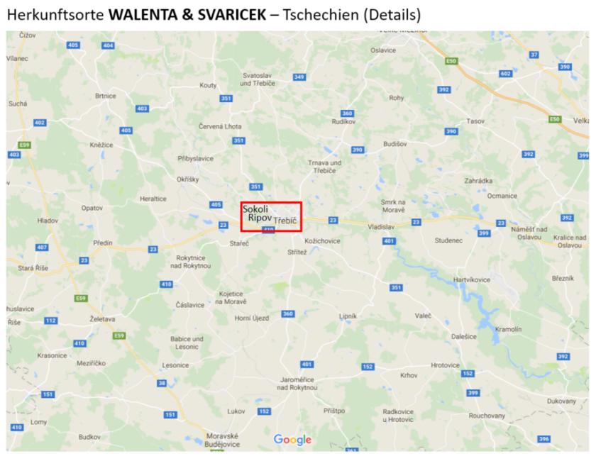 Walenta Svaricek D